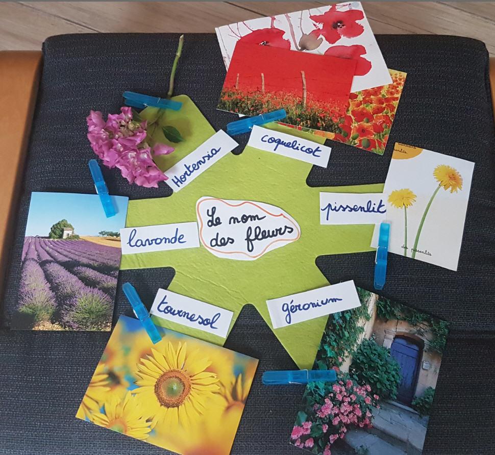 nom fleurs